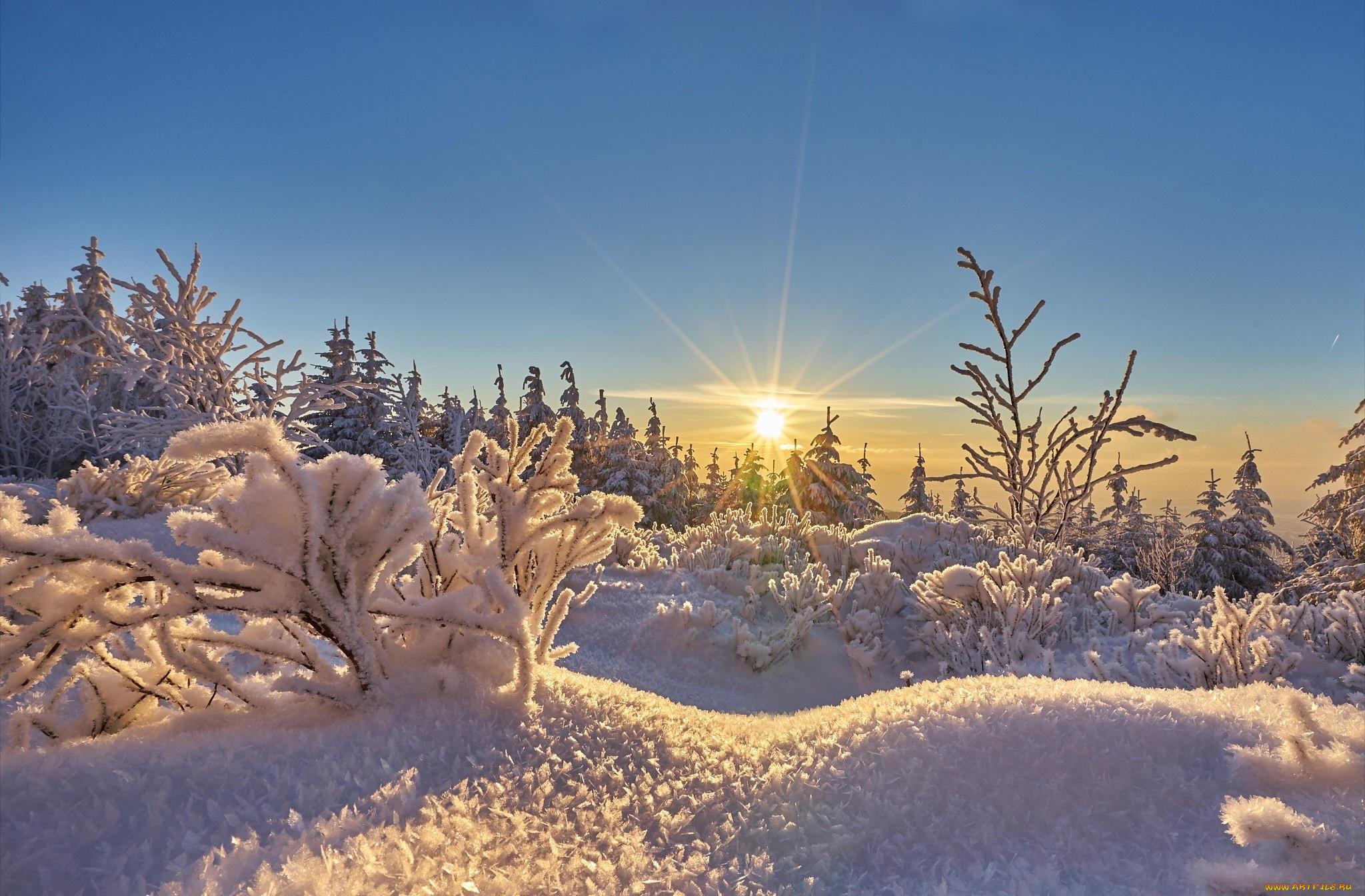 Солнечное морозное картинки